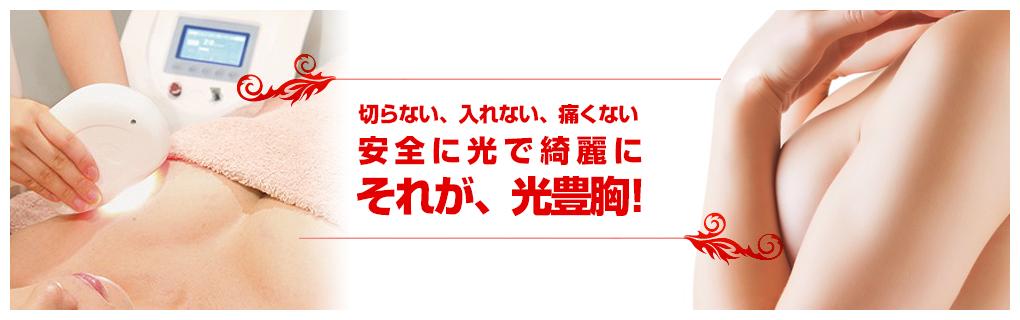 アポリネール光豊胸専門店